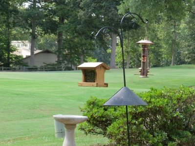 Bird feeders and bird bath 2014