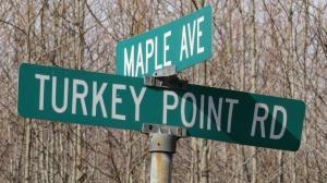 Turkey Point and Maple Rd jamiesbirds 2-8-15